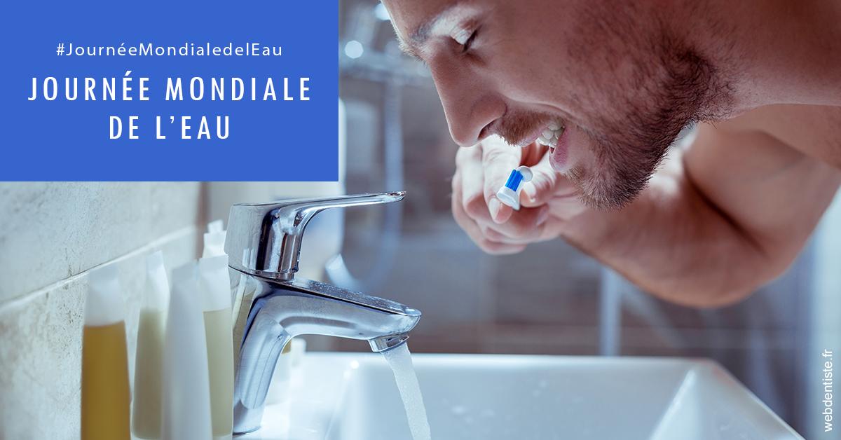 https://dr-geoffrey-szwarc.chirurgiens-dentistes.fr/Journée de l'eau 2